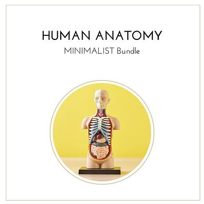 Anatomy Minimalist Bundle