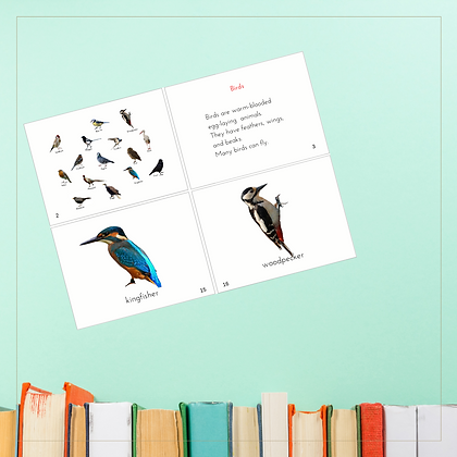 Book of Birds - Montessori - Homeschooling - Book