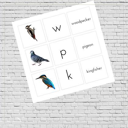 Matching & Memory Games (Birds) - Montessori - Homeschooling