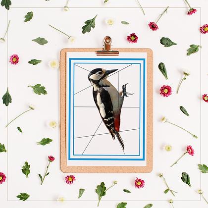 Birds Puzzle - Montessori - Homeschooling - Puzzle