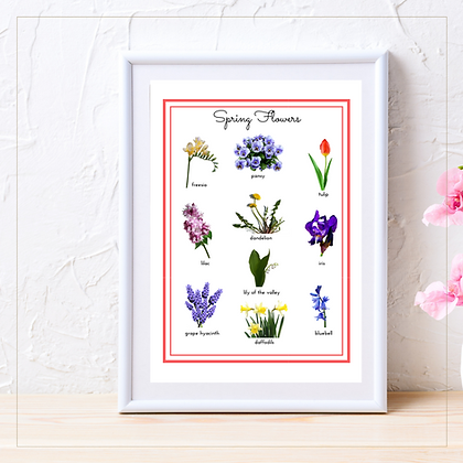 Spring Flowers A4 Posters - Montessori - Homeschooling - Poster