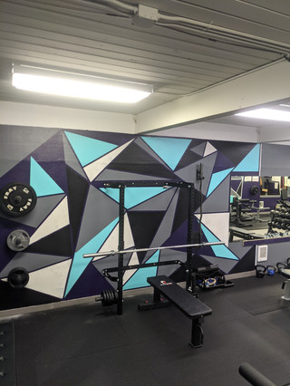 PRX power rack and benches/weights