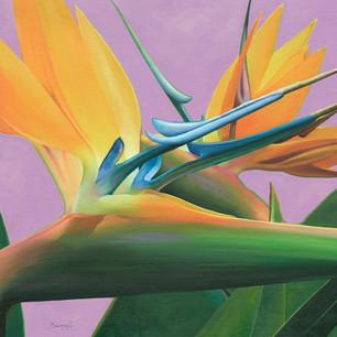Flor Nº 04