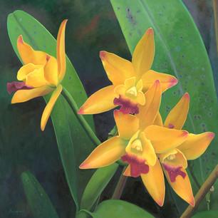 Flor Nº 03