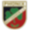 fsv_buttenheim.png