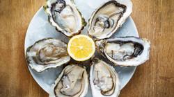 oysters-lemon-stock-today-tease-150806_477f67ef1a7127c43303ec79e6d3541f