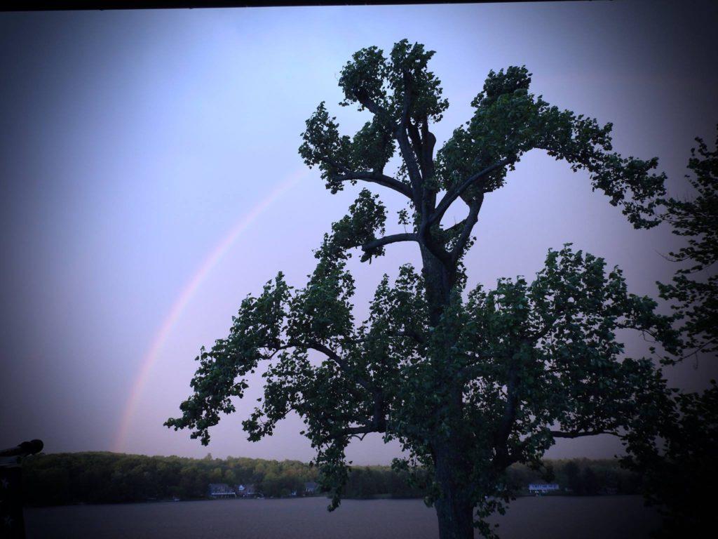 Vicki_Wagner_Post-Rainbow-2-1024x768