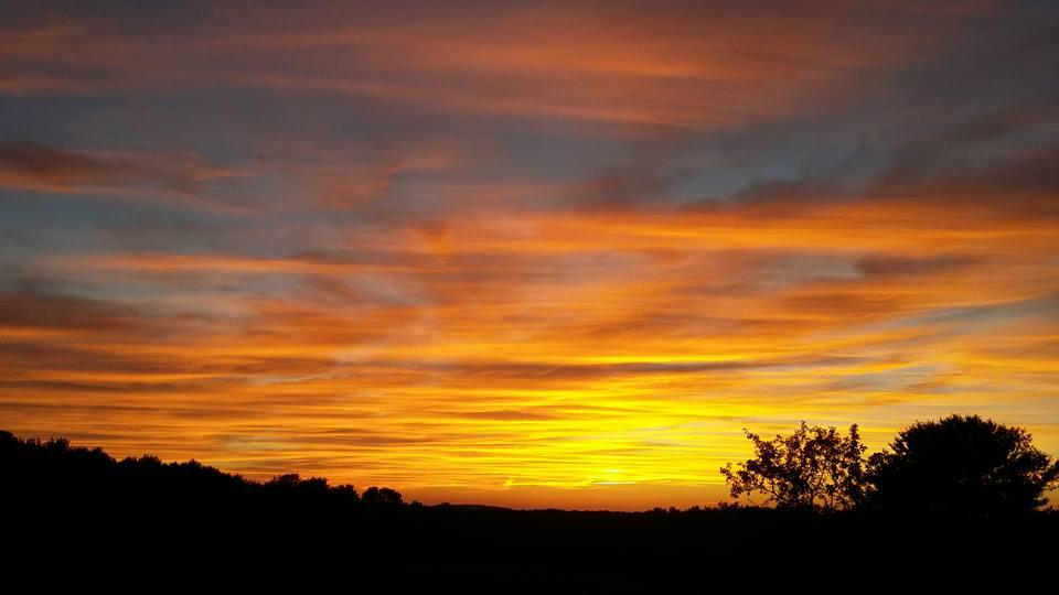 Diana_Saxon_Sunset