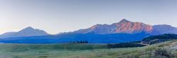 Colorado Springs Selley Real Estate