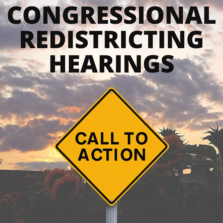 Redistricting Town Hall