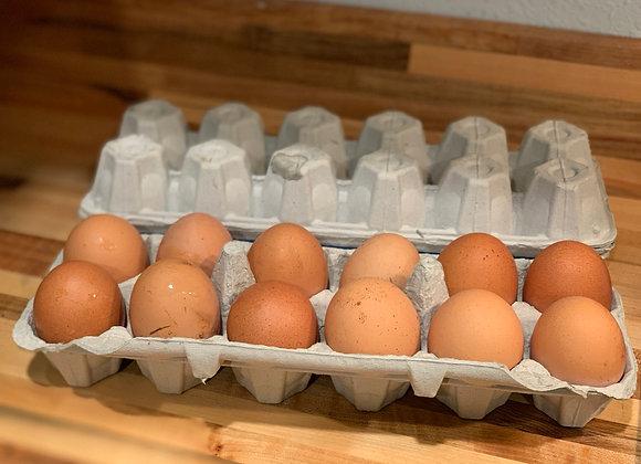 Farm Fresh Eggs- Dozen