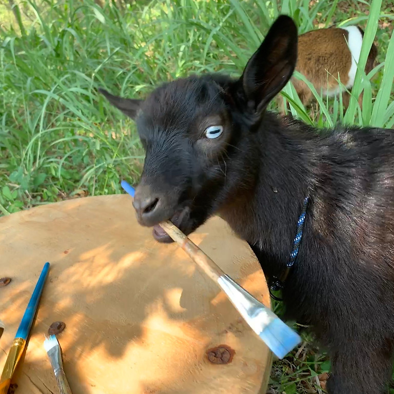 Art with Alexis - Painting On the Farm