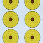 Replacement Paper Targets (20)