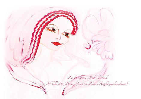 Bachblüte Red Chestnut  Leinwanddruck