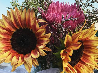 Always say yes to tinted sunflowers 🌻 _
