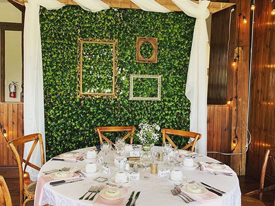 Greenery backdrop being used a room divi