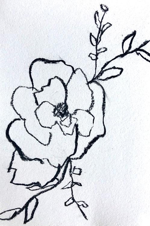 Wild Rose (pair)