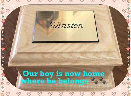 Winston xxxx