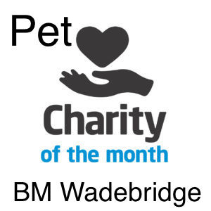 Charity of the month