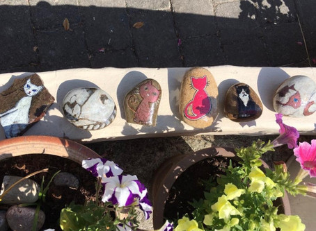 Are you lucky enough to find one of our Rocks?