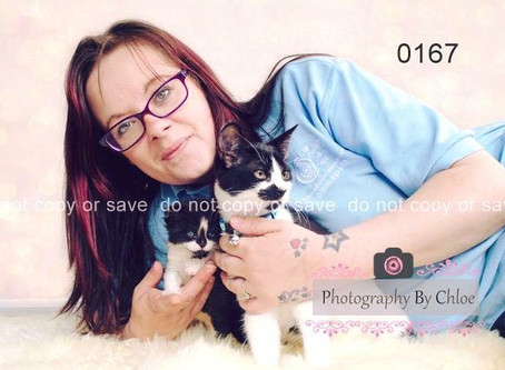 Online Cat Show Raising Funds For The Rescue