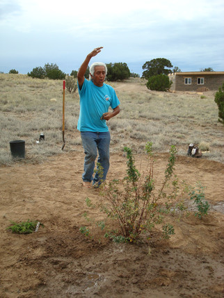 Beginnings.  Summer of 2008. Larry Littlebird is blessing our first permaculture guild planting. Our  600 sq. ft. adobe Farm House (in background) is also being built.