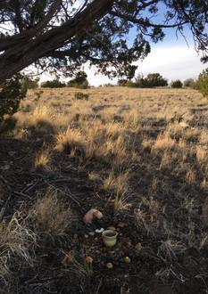 Tea on the land at sunset