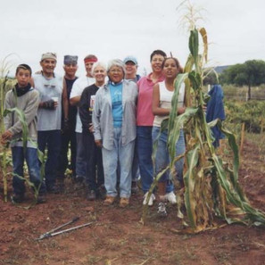 Youth-Elder mentorship garden project, growing corn the traditional way.