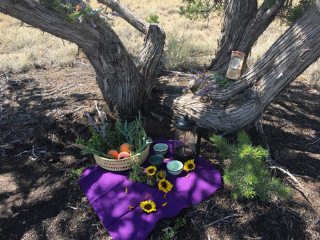 """Taking a break from farm chores in the Shelter of Tea and Juniper. Learn more about """"Land Art Tea Sanctuaries"""" at Hamaatsa."""