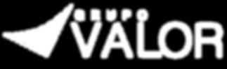 Logo partes valor blanco.png