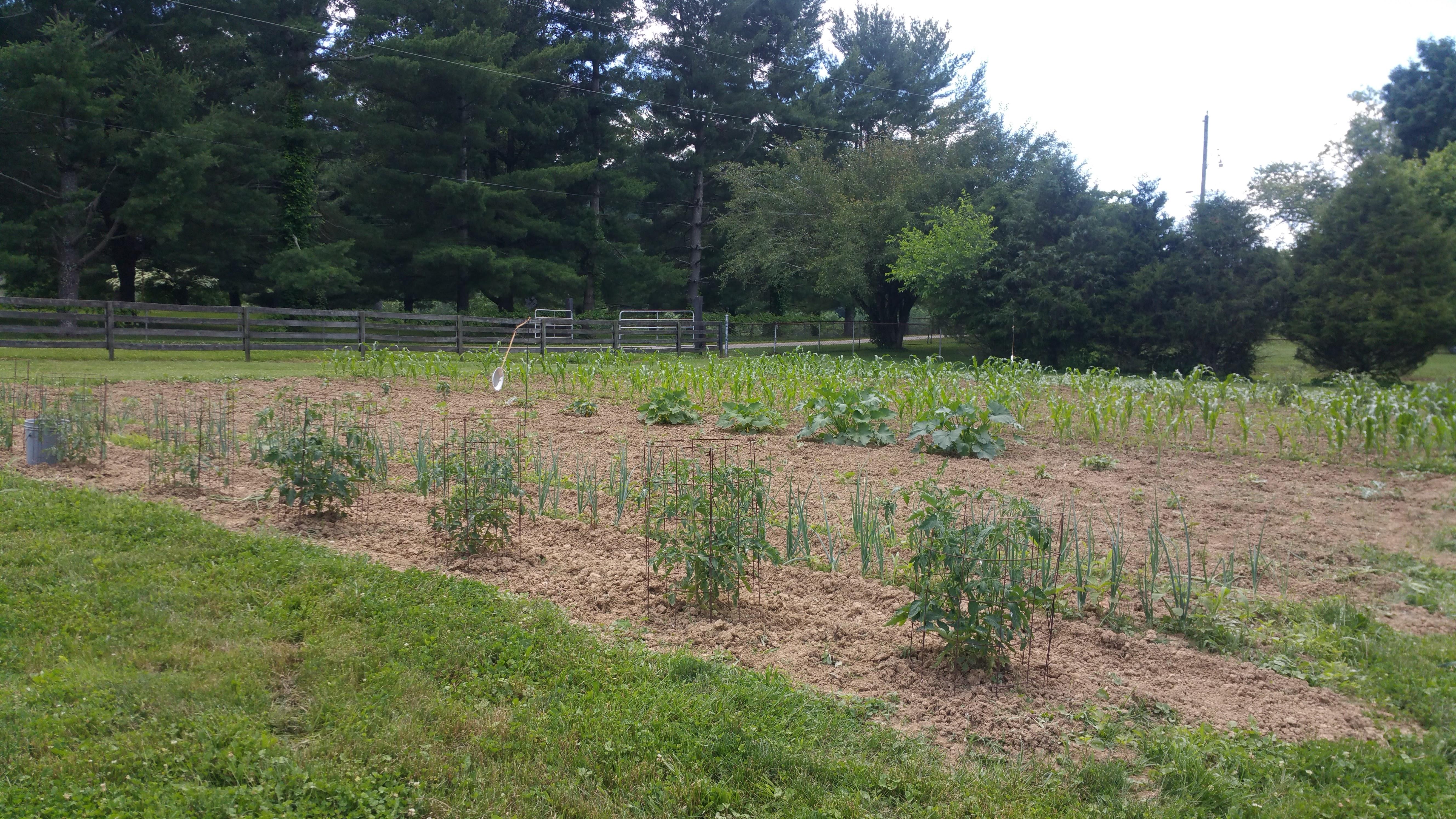 Brewer Family Farm garden