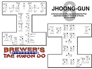 Brewer's Tae Kwon Do- Jhoong-gun form