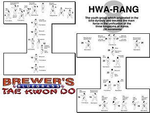 Brewer's Tae Kwon Do- Hwa-rang form