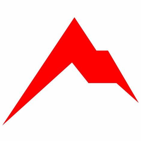 Rainier Arms Mountain Logo Decal