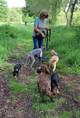 Woodland Dog Walker
