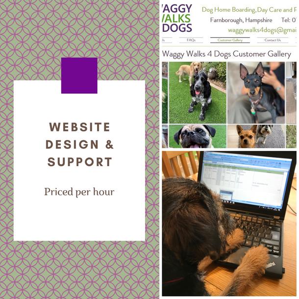 Website Design and Support