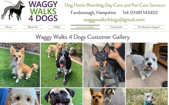 Pet Business Templates & Help