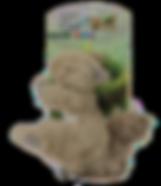 Dog Sitter Farnborough, Dog Sitter Fleet, Alternative to Kennels, Dog Sitter Hampshire, Dog Sitter