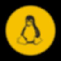 linux-server-system-platform-os-computer