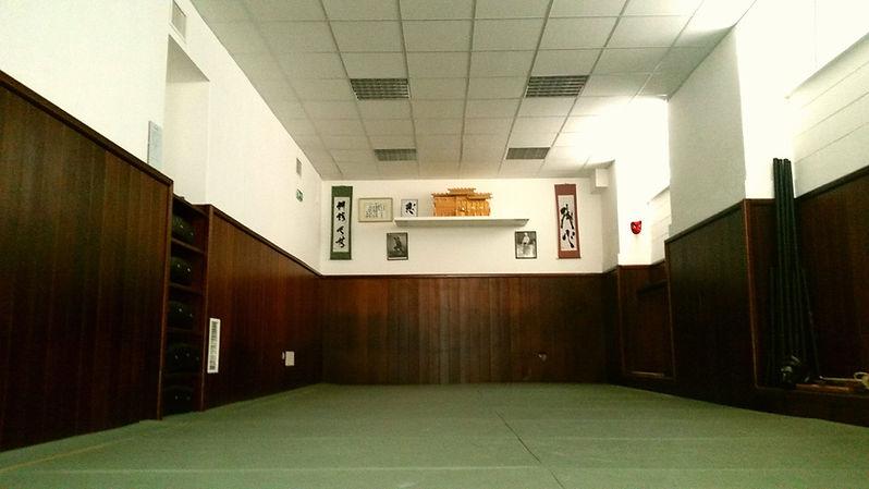 Panoramica dello Zenshin Dojo