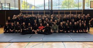 Seminario a Salisburgo con Pedro Fleitas Dai Shihan