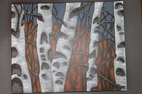 Autumn Birch 16X20ABC1