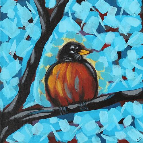 Robin Egg Blue 12X12REBC1