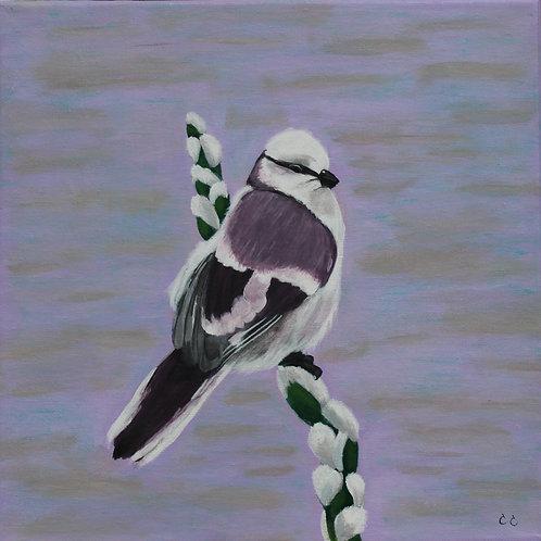 Purple Bird  12X12C1