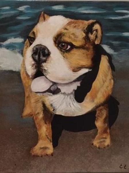 Commissioned Pet Portrait