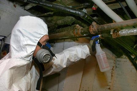 asbestos abatement page.jpg
