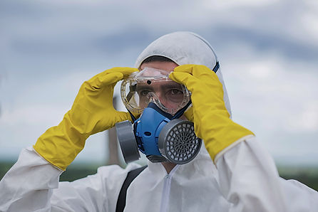 mold removal page.jpg