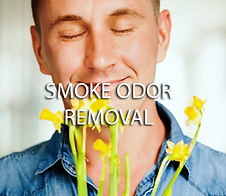 odor removal 1.png
