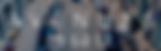Screen Shot 2019-01-15 at 9.00.23 PM.png
