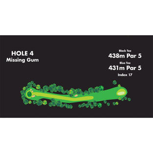 HOLE 4 Missing Gum